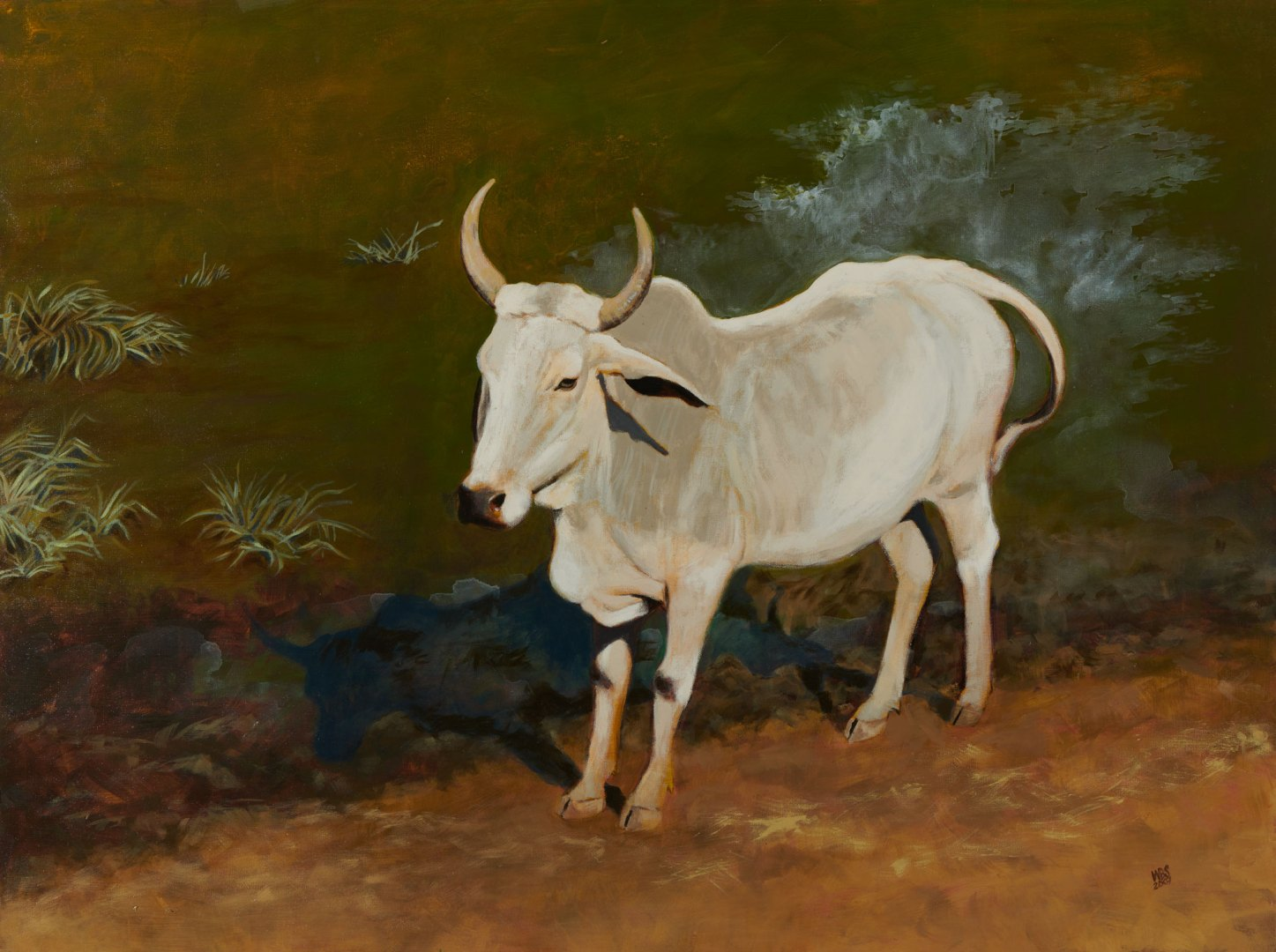 Painting of a Zebu at Bharatpur, acrylic on canvas, SOLD