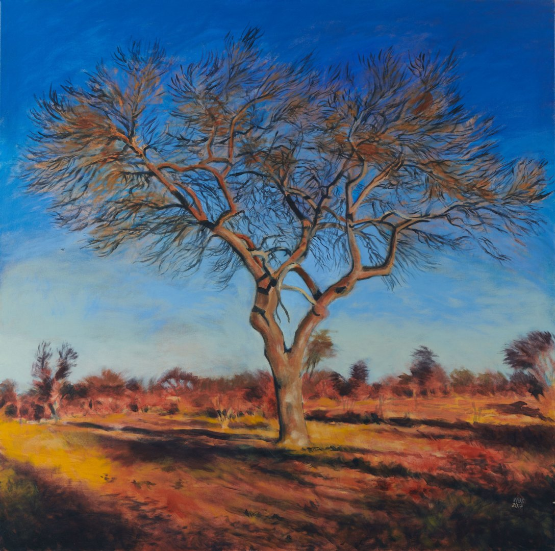 Painting of marula, acrylic on canvas, 110 cm x 110 cm, SOLD